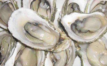 莆田牡蛎国家地理标志证明商标