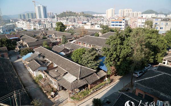 平桂区注册农产品商标54件